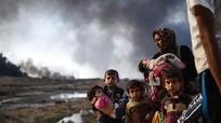 Hơn 100.000 dân thường bị IS bắt làm 'lá chắn sống' ở Mosul
