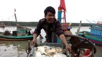 Khai thác hải sản ở Diễn Châu tăng 8.700 tấn so với cùng kỳ