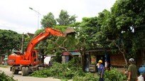 Qùy Châu chủ động đề phòng tai nạn thương tích mùa mưa lũ