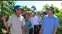Bí thư Tỉnh ủy thăm mô hình kinh tế tại huyện Nghĩa Đàn