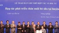 Vinamilk tính chuyện nuôi bò sữa công nghệ cao ở Hà Nội