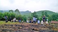 Sớm giải quyết vướng mắc vùng nguyên liệu TH và người dân Yên Thành