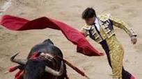 Những lễ hội đẫm máu nhất thế giới
