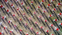 Những hình ảnh ấn tượng của Đại hội thể dục thể thao làng Đỏ