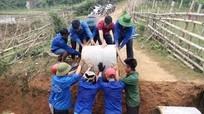 Sinh viên tình nguyện trồng keo, mở đường giúp dân bản