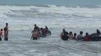 Bất chấp cảnh báo bão, du khách vẫn liều lĩnh tắm biển Cửa Lò