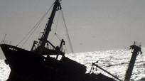 Danh sách 13 người trên tàu hàng gặp nạn ở biển Nghệ An