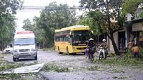 Yên Thành: Quốc lộ 7B ách tắc do cây gãy đổ