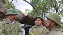 Chủ tịch Nguyễn Xuân Đường kiểm tra công tác khắc phục bão ở Đô Lương