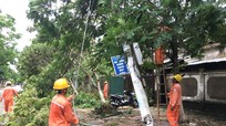 Chiều 18/7 sẽ đóng điện các đường dây trung áp bị hỏng do bão số 2 gây ra