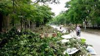 Hơn 1.300 tấn rác sau bão ở thành phố Vinh