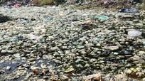 Báo động ô nhiễm nguồn nước ở miền núi Nghệ An