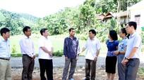 Quế Phong: 13 năm không thực hiện cấp giấy chứng nhận đất lâm nghiệp