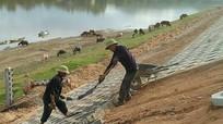 Gấp rút thi công dự án nâng cấp đê Tả Lam