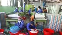 Nghệ An: Hơn 5 tỷ đồng hỗ trợ hoạt động khuyến công