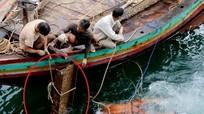 Kiếm tiền triệu mỗi ngày khi lặn 'mót sắt' ở đáy biển Nghi Thiết
