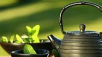 Giảm huyết áp hiệu quả với trà bạc hà