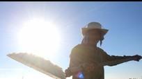 Nghệ An: Nơi người dân chạy đua 'cướp nắng' với trời