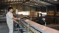 Nghệ An: Chỉ số sản xuất công nghiệp tăng gần 17%