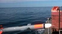 Mỹ muốn biến tên lửa Tomahawk thành sát thủ diệt hạm