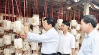 Nghệ An: Còn nhiều HTX hoạt động kiểu 'bình mới rượu cũ'