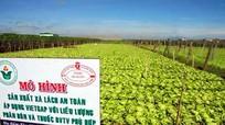 Chưa yên tâm với nông sản VietGAP
