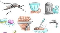 Nơi ẩn nấp của muỗi truyền bệnh sốt xuất huyết bạn không ngờ tới
