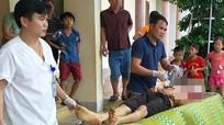 Trâu húc chết nhân viên thú y khi tiêm phòng
