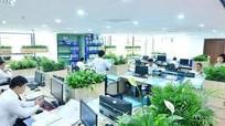 Văn phòng xanh tăng hiệu quả cho công việc