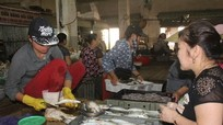 Hải sản 'hút' khách ngày lễ Quốc khánh