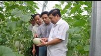 Kết nối cung cầu công nghệ cho doanh nghiệp tỉnh Nghệ An