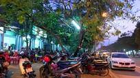 Tràn lan lấn chiếm vỉa hè vào ban đêm ở TP. Vinh