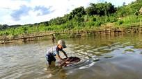 Bẫy cá 'độc, lạ' của trẻ em vùng cao Nghệ An