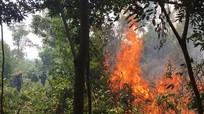 Cháy rừng lim ở khu vực giáp ranh Nghệ An - Thanh Hóa