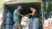 Con Cuông cấp 2,6 tấn cá giống cho người dân