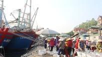 Nhiều tàu cá Quỳnh Lưu đã vào bờ tránh bão số 10