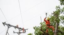 Công ty Điện lực Nghệ An khuyến cáo phòng tránh tai nạn điện trong mùa mưa bão
