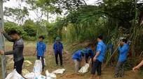 Đoàn viên thanh niên giúp dân phòng chống bão số 10