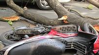 5 tai nạn dễ gặp trong mưa bão