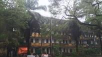 Thành phố Vinh vận động người dân di dời đến nơi an toàn trước bão đổ bộ