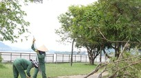 TP. Vinh: Công ty cây xanh, môi trường huy động 100% nhân lực, vật lực sau bão số 10