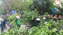 Hơn 450 công nhân thành phố Vinh gồng mình xử lý rác sau bão
