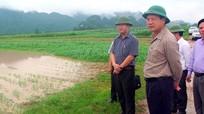 Phó Chủ tịch tỉnh Nghệ An nhắc nhở lãnh đạo huyện chậm cập nhật thiệt hại bão