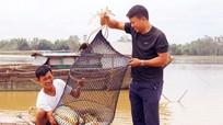 Cuộc sống làng chài Hưng Long sau bão