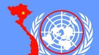 [Infoghraphic] - Quá trình 40 năm Việt Nam gia nhập Liên Hợp quốc