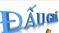 Thông báo bán đấu giá QSD đất