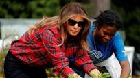Đệ nhất phu nhân Melania Trump trồng rau trong vườn Nhà Trắng