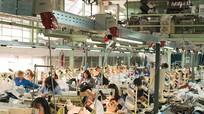 1/10 lao động xuất khẩu đang bị bóc lột, mua bán, nô lệ hóa