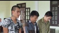 46 tháng tù giam cho tội 'xin đểu' nhà xe