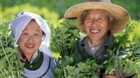 Công thức của sống lâu của 5 quốc gia có người trường thọ nhất thế giới